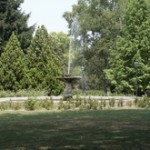 Ferrara la verde